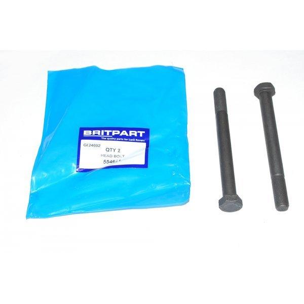 Cylinder Head Bolts - 554621