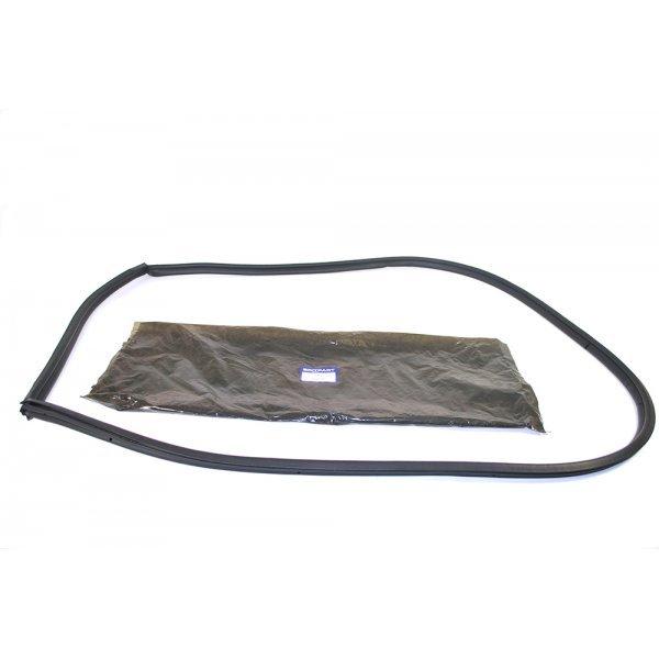 Rear Side Door Seal - CFE500600