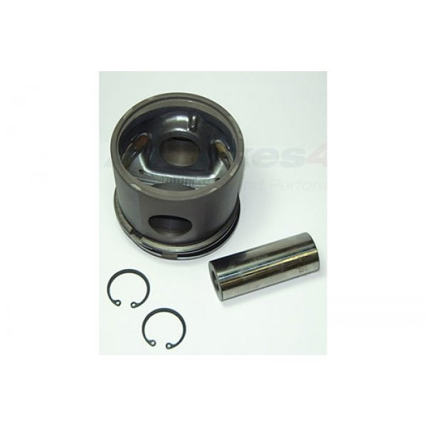 Piston and Rings Assembly - ERR1390