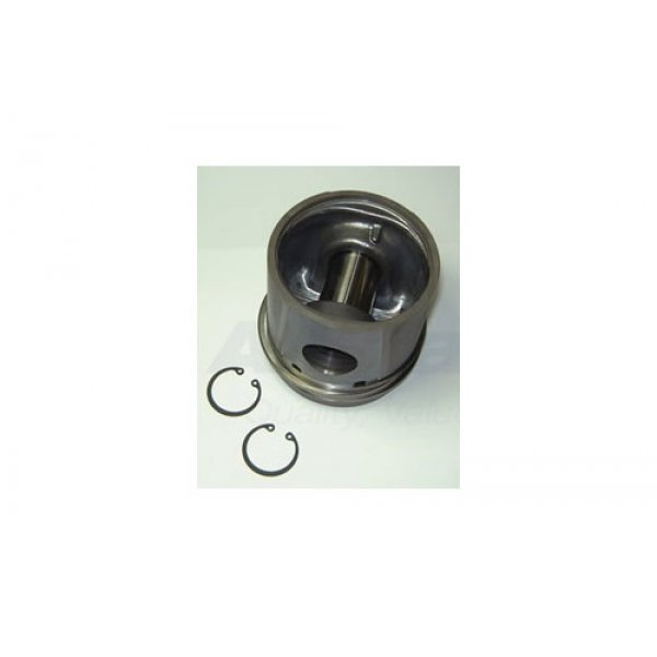Piston and Rings Assembly - ERR2410F