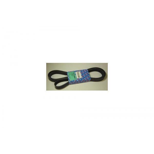 Serpentine Belt - ERR5579