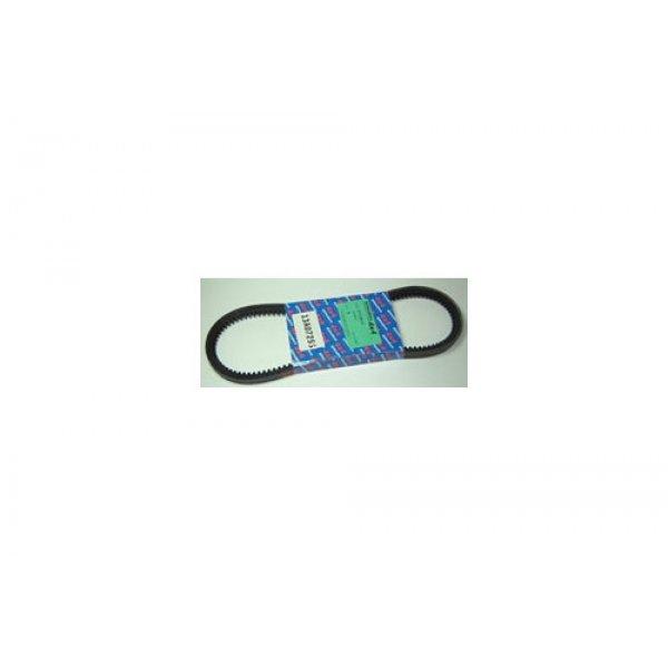 Power Steering Belt - ETC5815