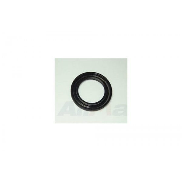 Oil Seal - Extension Case - ICV100000