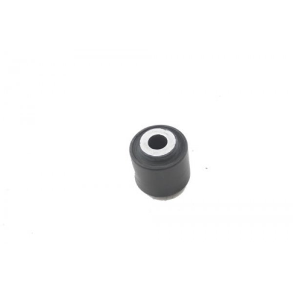 Link Eye Bush - RGX100970