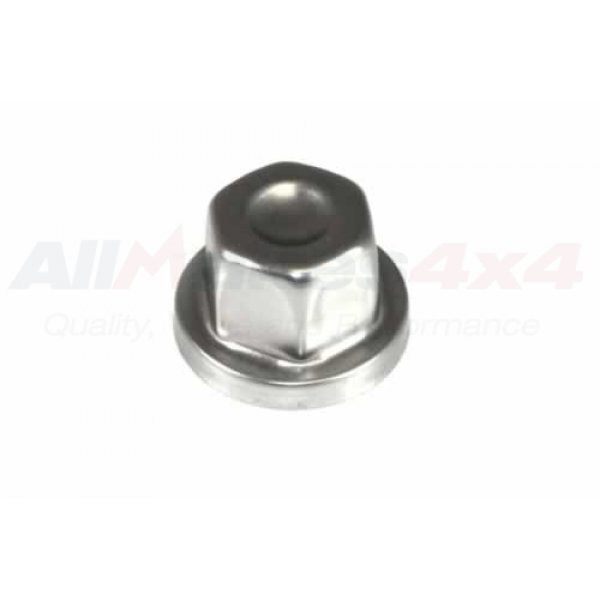 COVER - WHEEL NUT - RRJ100120