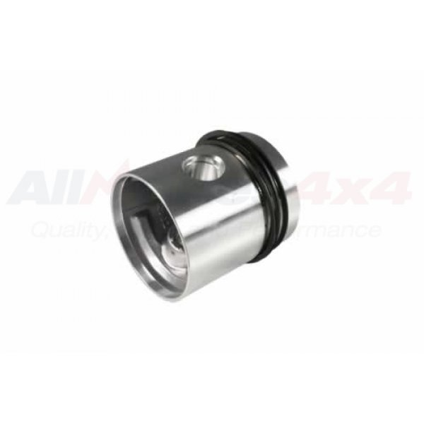 Piston and Rings Assembly - RTC418840