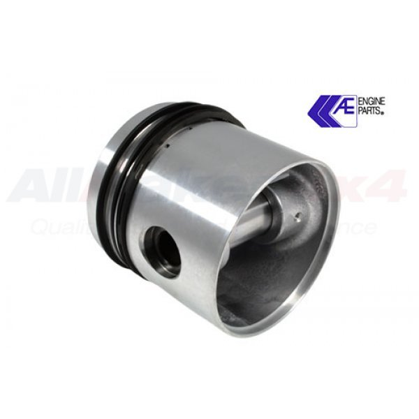 Piston and Rings Assembly - RTC473420