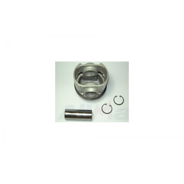 Piston and Rings Assembly - RTC6442S